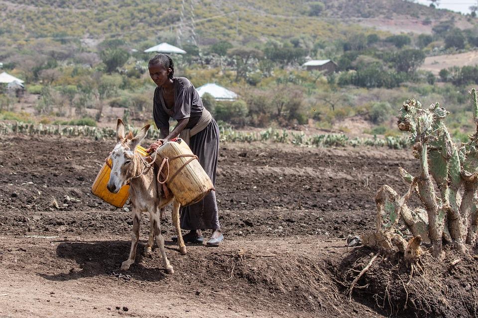 Les sites éthiopiens à visiter lors d'un court séjour